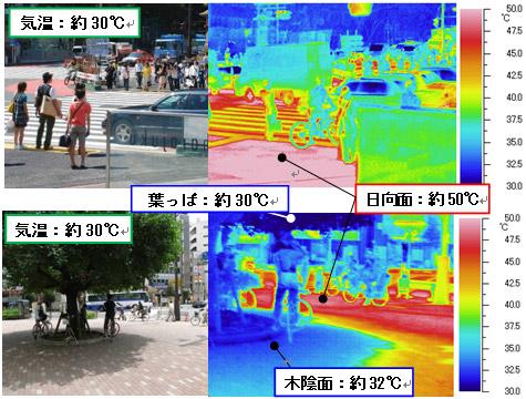 日向と日陰の表面温度は約20度の差で放射熱が違う
