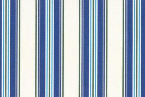 SA52カラーイメージ