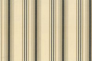 SA54カラーイメージ