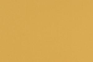 マリーゴールドカラーイメージ